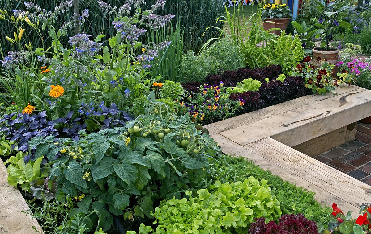 Die richtige Erde für Ihre Pflanzen von Naturgut