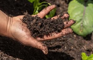 Die richtige Erde von Naturgut